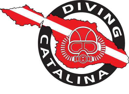 Diving-Catalina-Logo,-Transparent